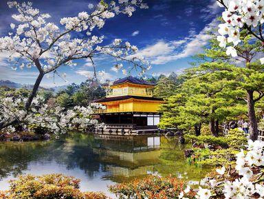 Киото — первое свидание