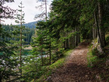 Дикая красота Черногории