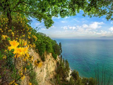 Природа иистория Абхазии— поездка изАдлера