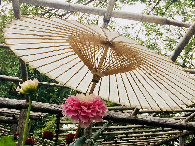 Позеленому кольцу Яманоте-сен