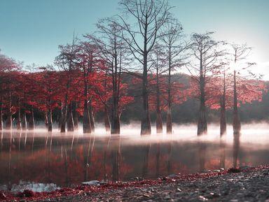 Кипарисовое озеро долины Сукко