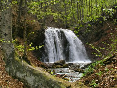 Заповедный Крым: трекинг к водопадам Головкинского