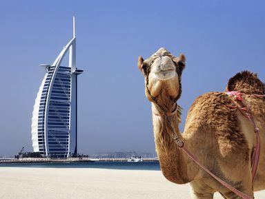 В Дубай за впечатлениями!