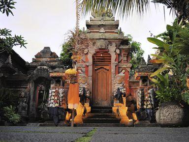 Сердце Бали: живописные плантации, Лес обезьян и краски Убуда