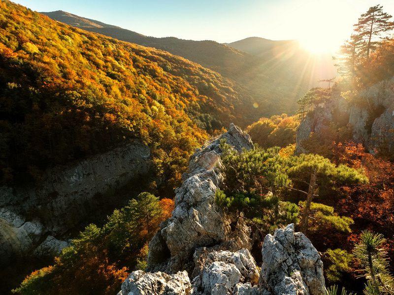 Большой каньон: осени крымской цветной палантин width=