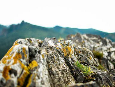 Три вершины Красноярска: путешествие по местам силы