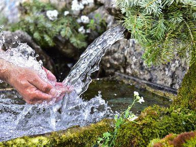 Путешествие кродникам сцелебной водой