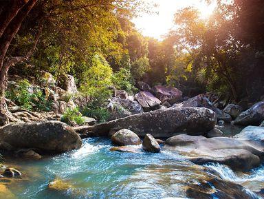 Дикий мир Нячанга: от острова Обезьян до водопадов Бахо