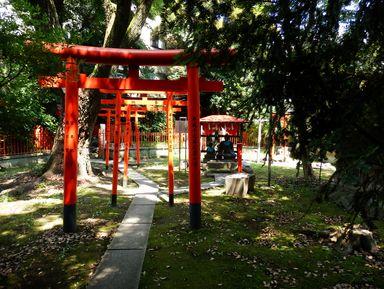 Необычные маршруты по Токио на русском языке – отзывы и цены на экскурсии 2021 года