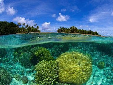Экскурсии на острова Пхукета на русском языке – отзывы и цены на экскурсии 2021 года