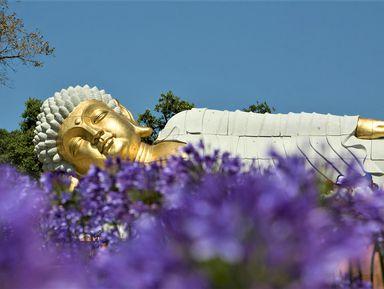 Райские сады Будды