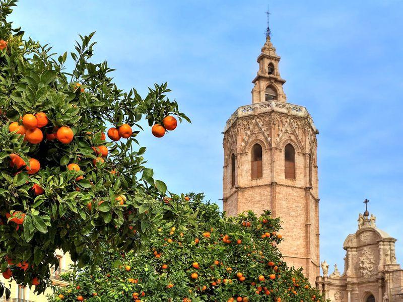 Экскурсия Ежедневная прогулка по Валенсии