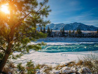 Путешествие в Чемал: открыть природу Горного Алтая