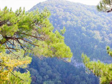 В горы! Поход к Орлиным скалам и Агурским водопадам