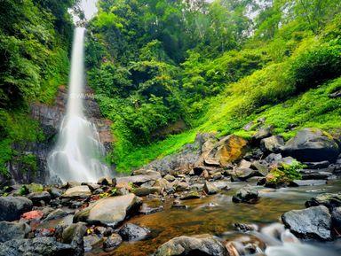 Водопады Бали и рисовые террасы