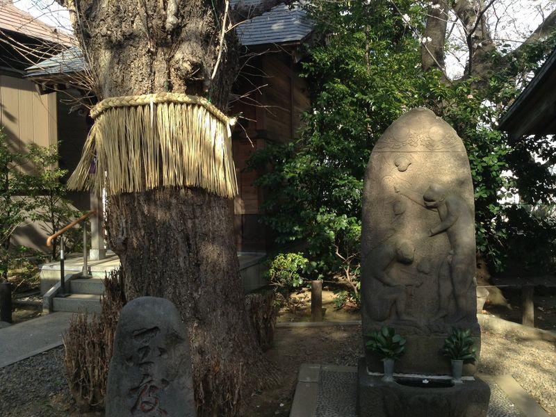 Уютный район Кагуразака: исторический экскурс с ланчем и шоппингом