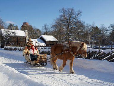 Экскурсии по пригородам Стокгольма на русском языке – отзывы и цены на экскурсии 2021 года