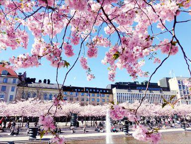 Экскурсия в Стокгольме: Нетуристический Стокгольм