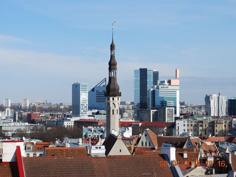 «Орел и Решка» в Таллине width=