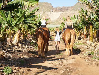 Конная прогулка на Тенерифе