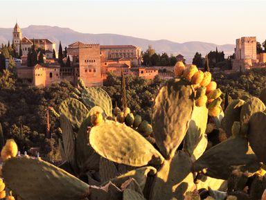 Кварталы Гранады: арабский Альбайсин и цыганский Сакромонте
