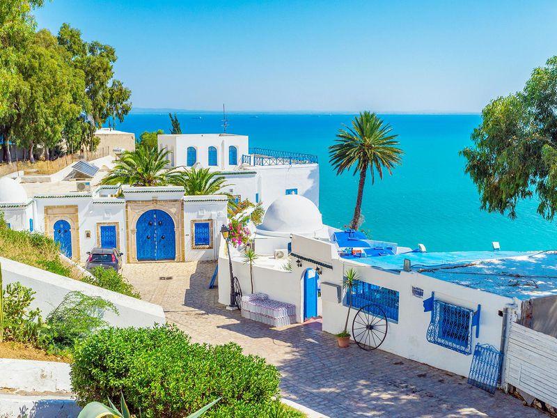 Сиди-бу-Саид, Зигван иТакруна: мозаика тунисского наследия